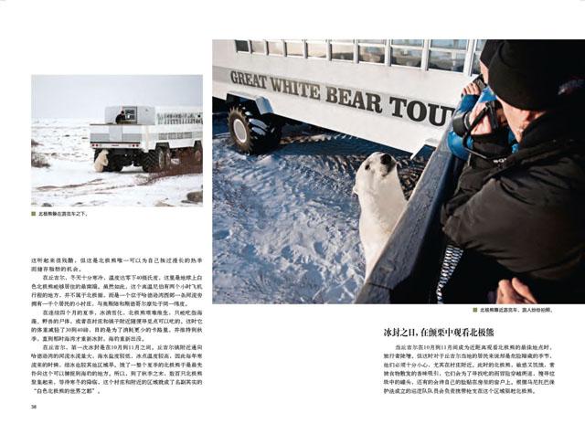 Churchill Town in Canada. World's Polar Bear Capital 4