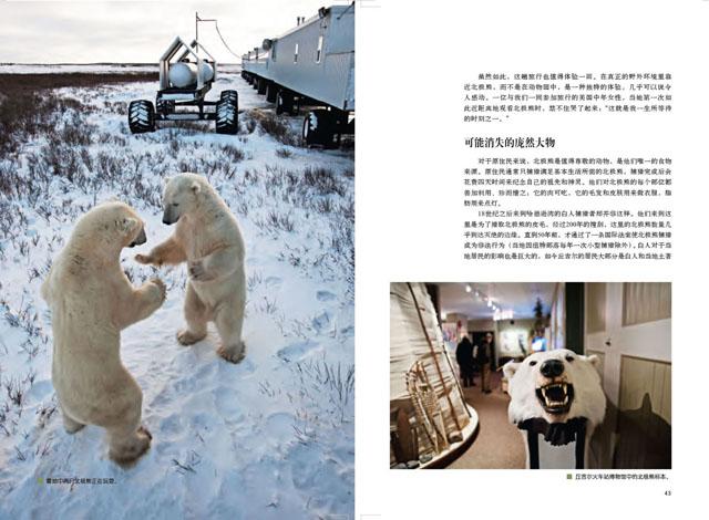 Churchill Town in Canada. World's Polar Bear Capital 6