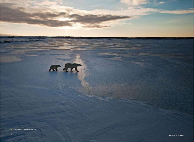 Churchill Town in Canada. World's Polar Bear Capital 8